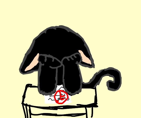 black cat got an f on a test