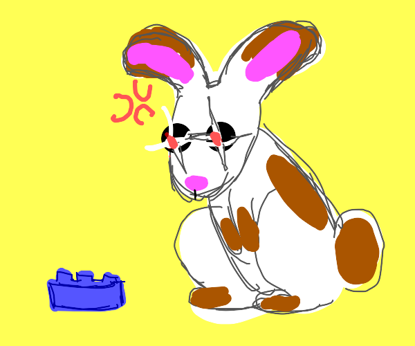 Rabbit angry at lego