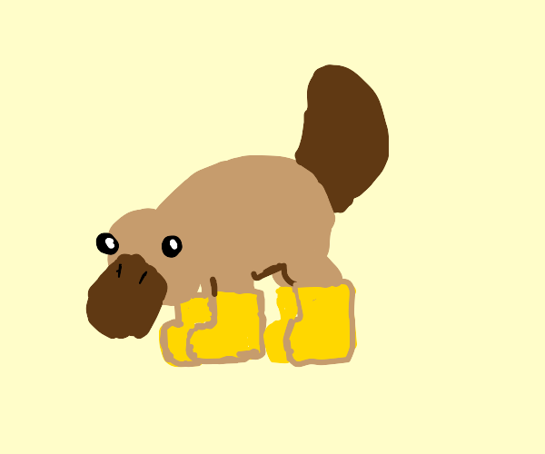 platypus in boots