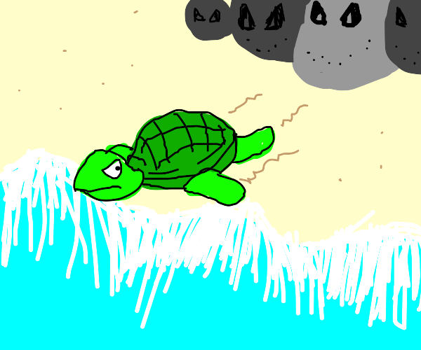 turtle being chased by stones