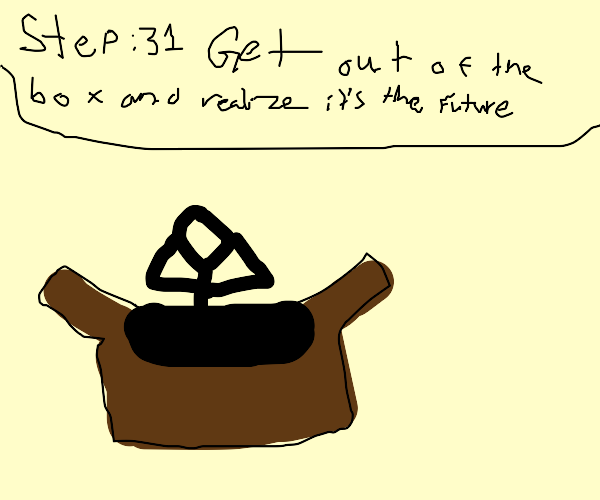 Step 30: Be stuck in the box for days!