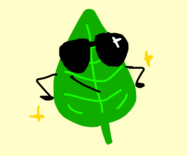 A leaf which looks cool wearing sunglasses