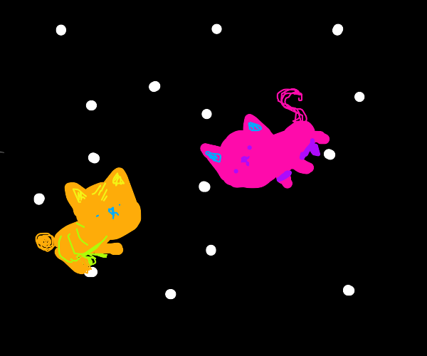 2 cats in space