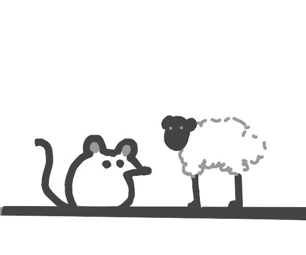 a mouse and a sheep
