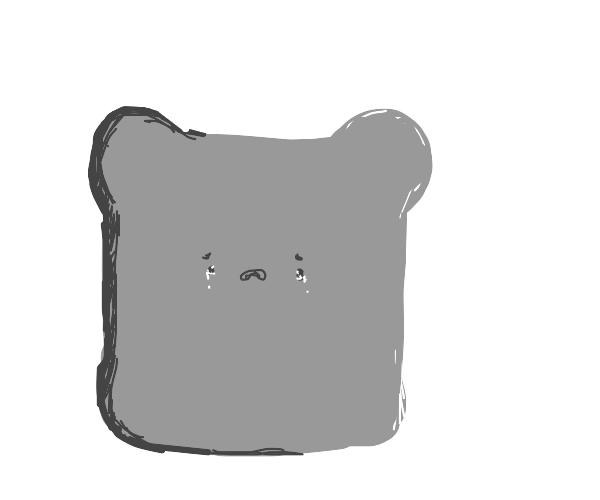 Sad piece of toast