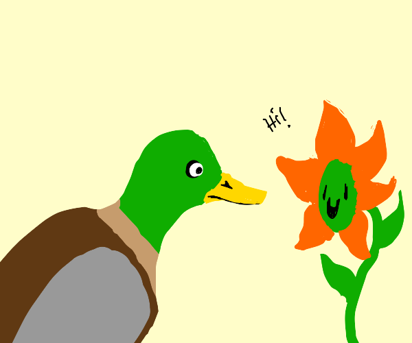 Duck talks to flower