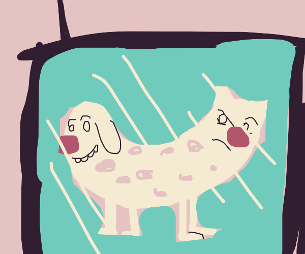 cat and dog in television
