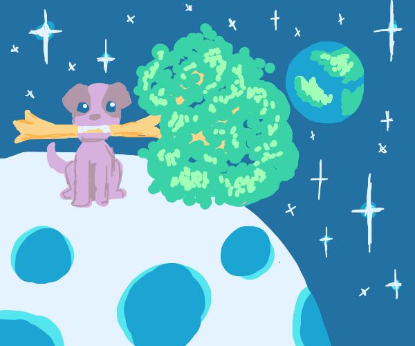 lunar dog eating a lunar tree