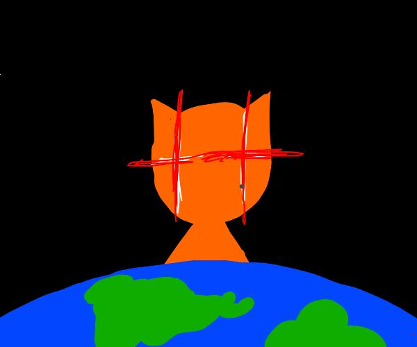 cat plans world domination