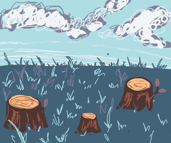 Three tree stumps