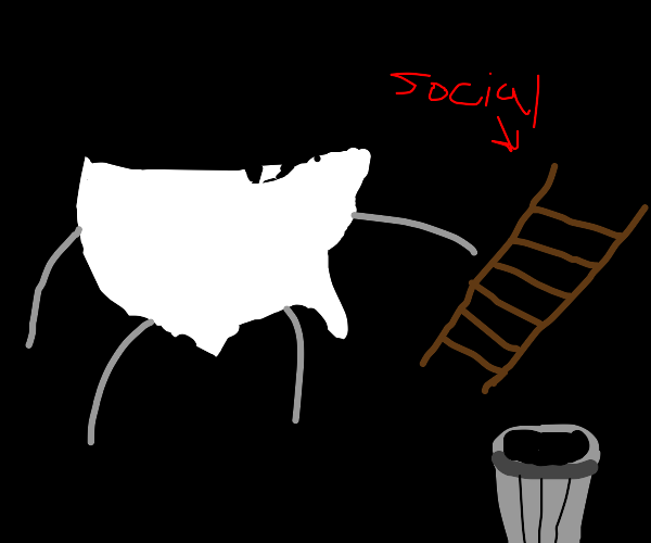 white america throws away the social ladder