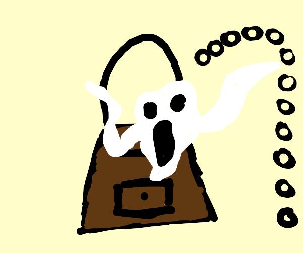 Haunted Handbag
