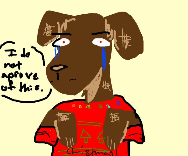 Christmas sweater  on a dog