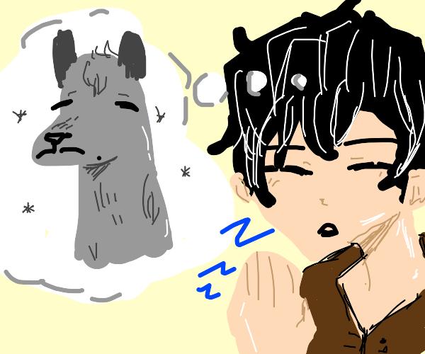 Dreaming of llamas
