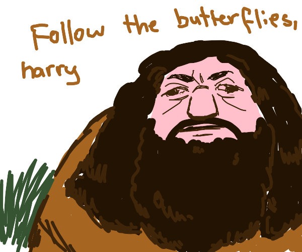 Why couldnt it be follow the butterflies?