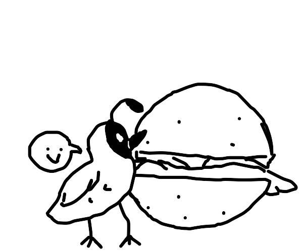 Tiny Quail pecks at Big Burger
