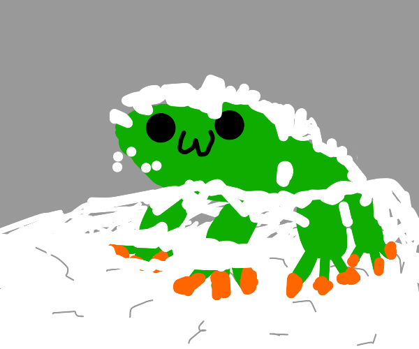 frog in the snow