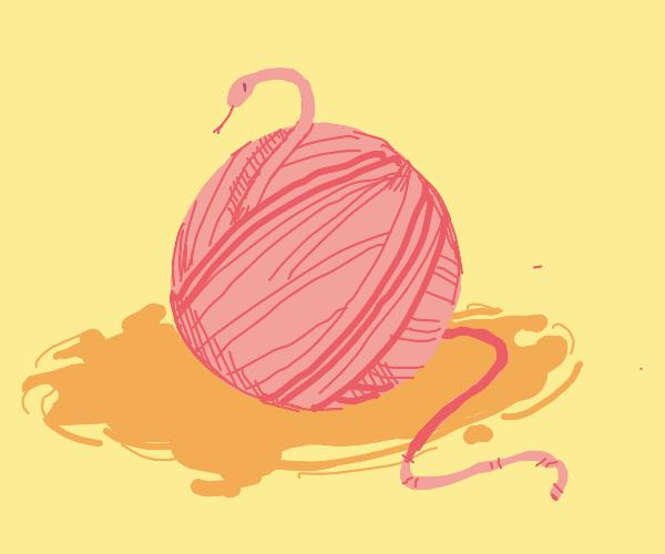 sneaky snake yarn