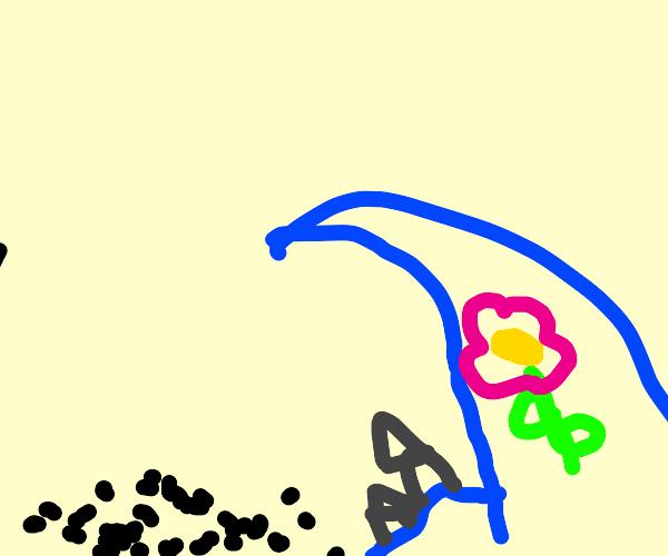 Flower in a Tsunami