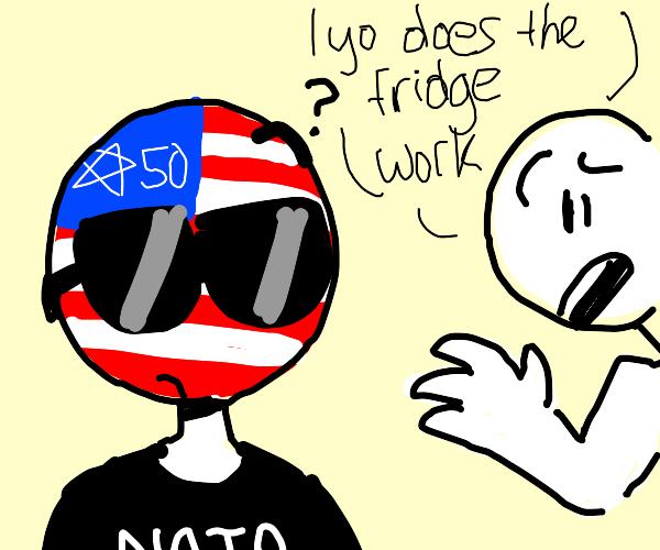 hooman asks countryhuman is the fridge works
