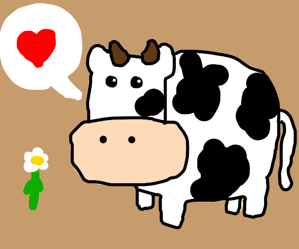 bloated cow in love with a flower