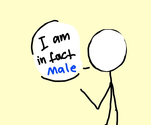 Stickman confirms his gender