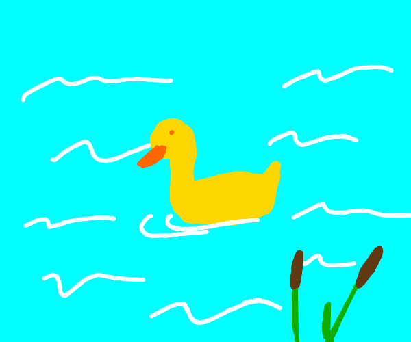 Yellow Duck in Pond