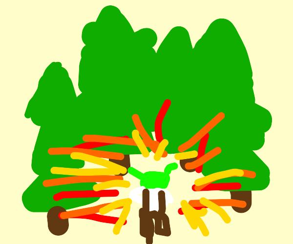 shrek exploding ina forest