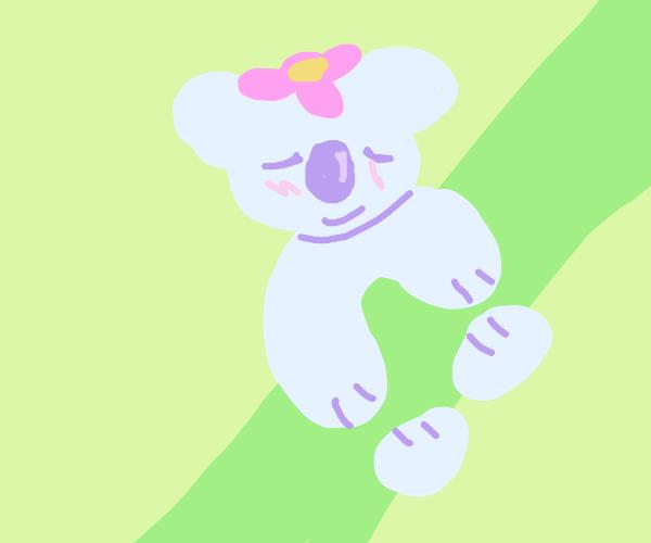 Koala smilin n blushin w/ flowers on head