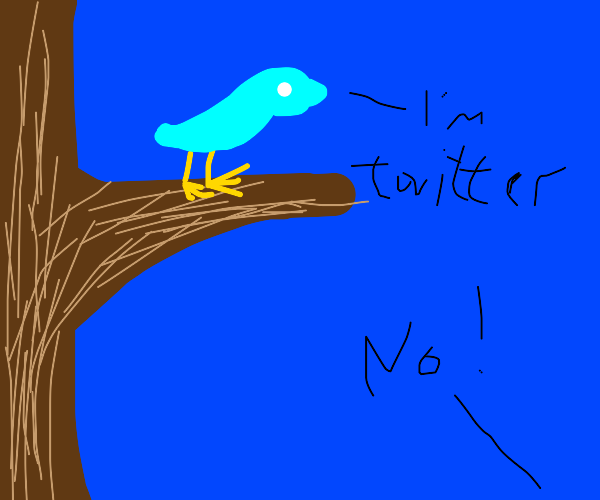 he thinks he's twitter, but he's just a bird