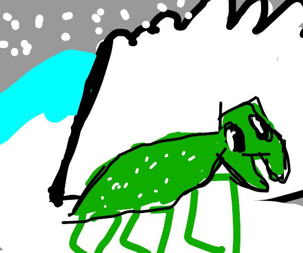 Artistic grasshopper
