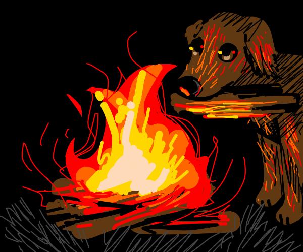 Dog makes firewood
