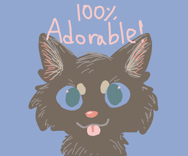 100 per cent adorable black kitty