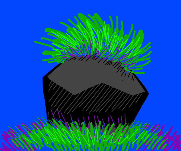 rock with grass hair
