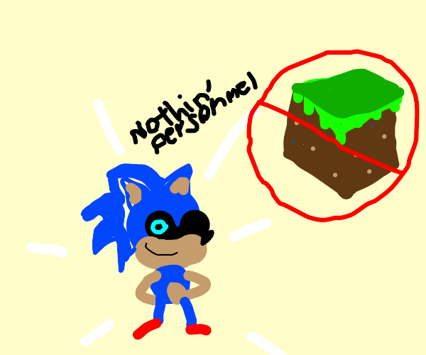 sonic teleported to the end ( not minecraft )