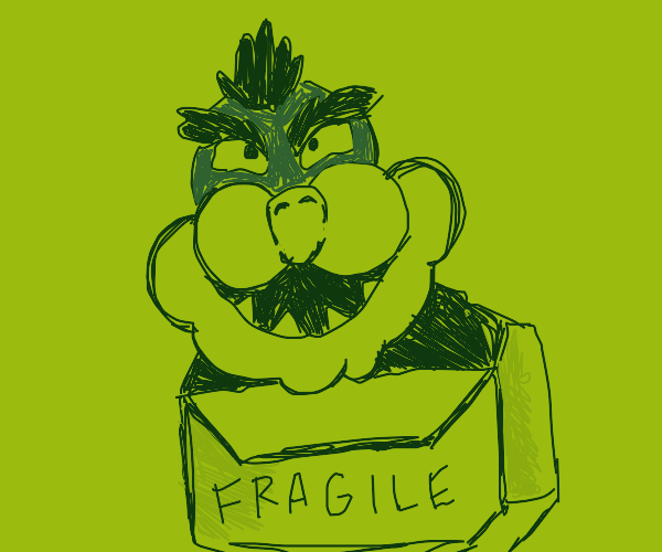 Bowser in a box