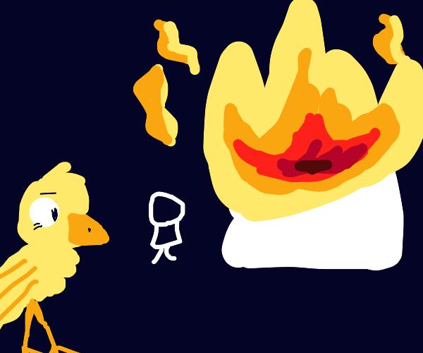 Bird watches building burn down