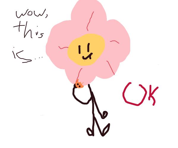 flower eat cookie