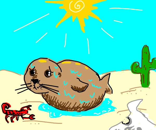 Fat seal in desert