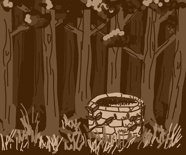 Lonely well in the forest