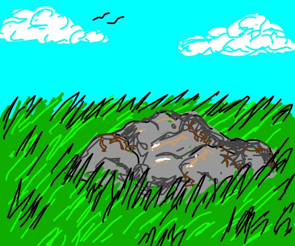 A big, wide rock on a grassy plain
