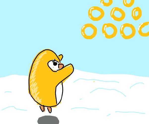 Yellow Penguin wants rings