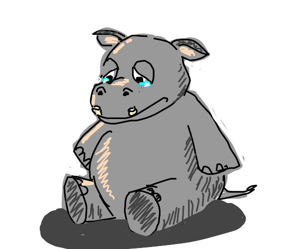 a sad hippo