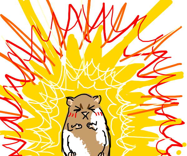 hamster is about to release the heat of a sun