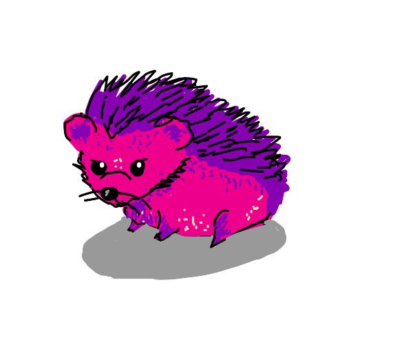 Pink and purple hedgehog