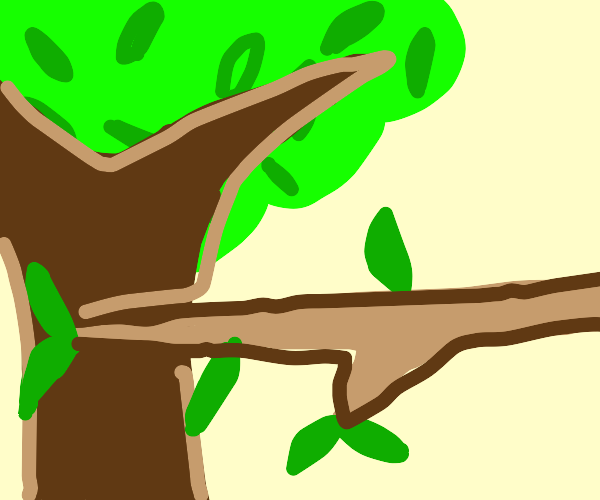 a tree with a branch in front