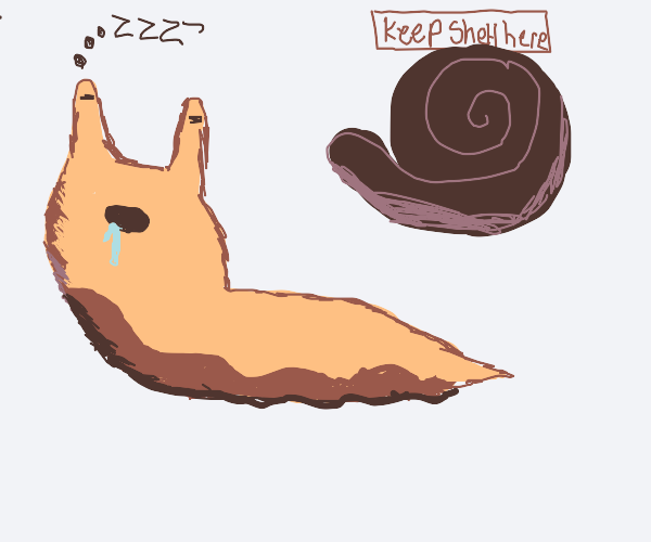 Snails sleep without there shell