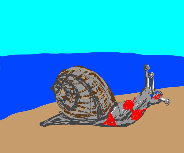 pretty snail in a bathing suit