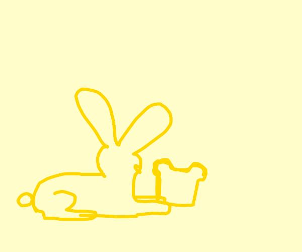 Yellow rabbit eating toast
