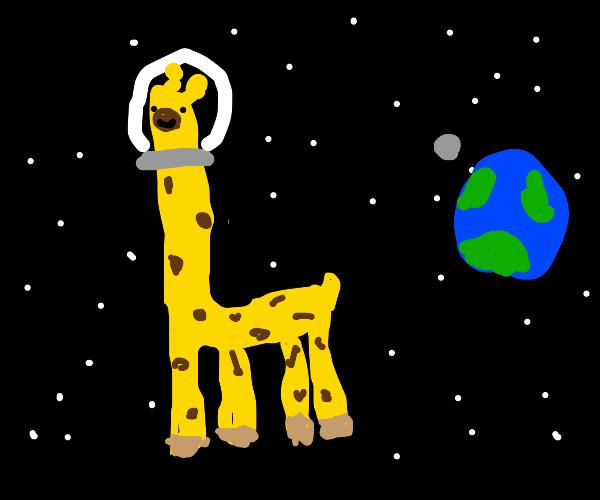 Space giraffe in space.